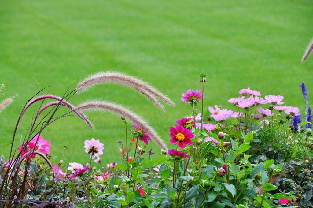 Realizzazione giardini Orosei