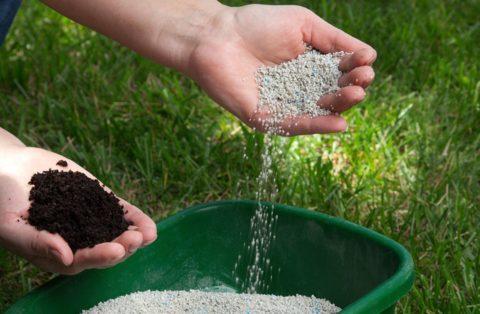 Trattamenti fertilizzanti e concimazioni